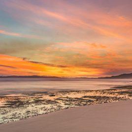 Sunny Sandpatch